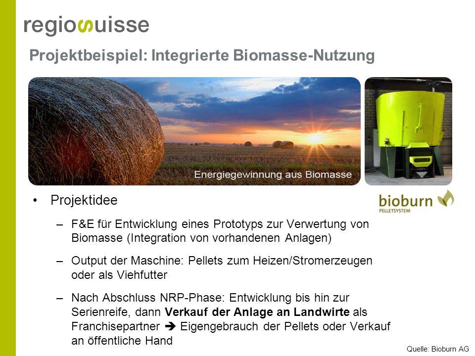 Projektbeispiel: Integrierte Biomasse-Nutzung Projektidee –F&E für Entwicklung eines Prototyps zur Verwertung von Biomasse (Integration von vorhandene