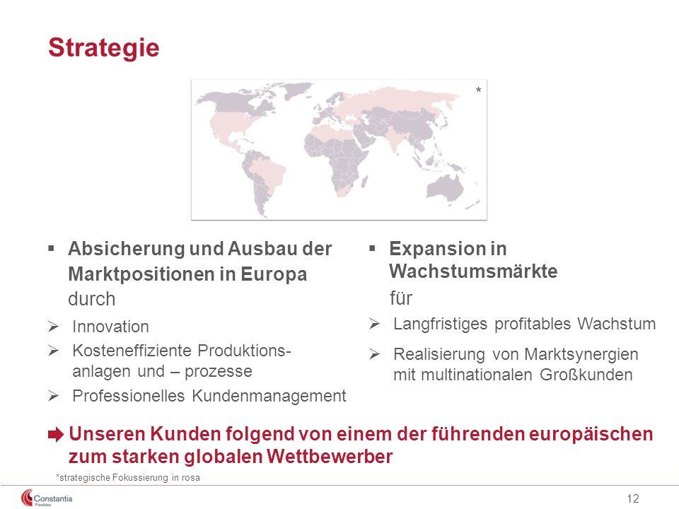 12 Strategie Absicherung und Ausbau der Marktpositionen in Europa durch Innovation Kosteneffiziente Produktions- anlagen und – prozesse Professionelle