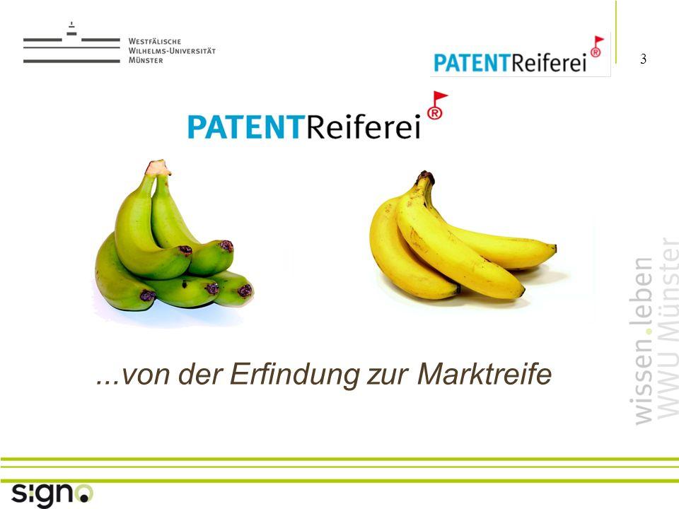 Susanne Föhse 4 Titel der Präsentation Wesentliche Ergebnisse bis März 2010 A) Reifungsmanagement --> Reifungsmanager etabliert als aktive Berater der HS-Patente vor Ort (u.a.
