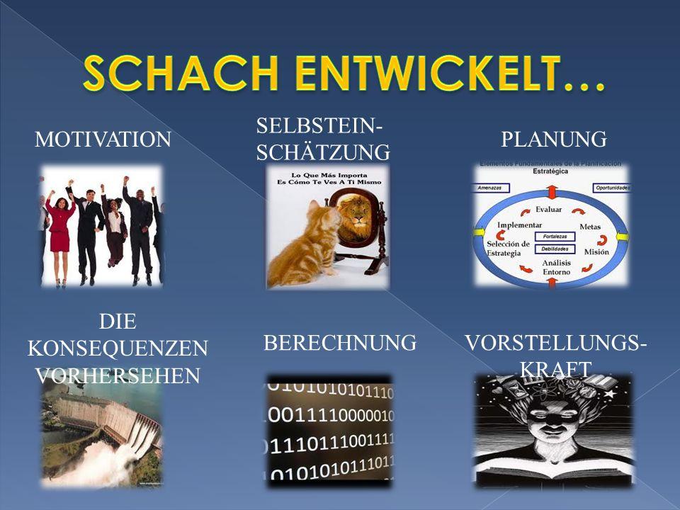 MOTIVATION SELBSTEIN- SCHÄTZUNG PLANUNG DIE KONSEQUENZEN VORHERSEHEN BERECHNUNGVORSTELLUNGS- KRAFT