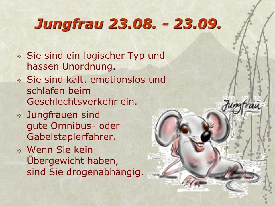 Jungfrau 23.08.- 23.09. Sie sind ein logischer Typ und hassen Unordnung.