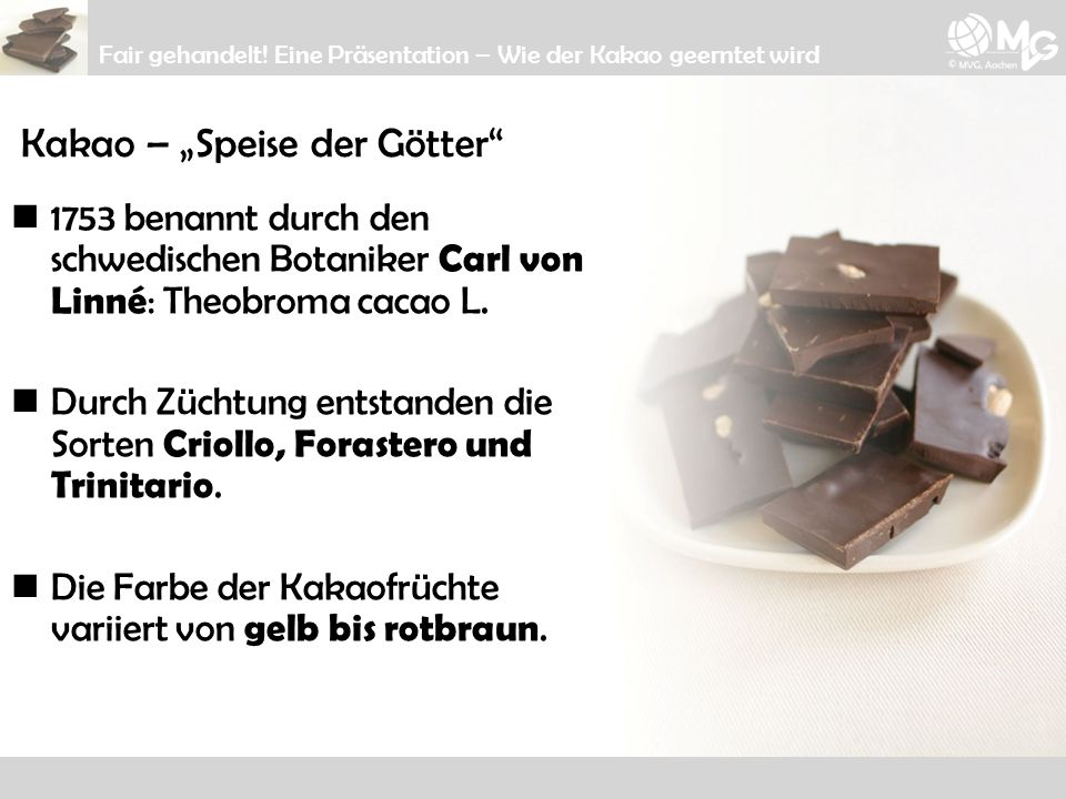Kakao – Speise der Götter 1753 benannt durch den schwedischen Botaniker Carl von Linné : Theobroma cacao L. Durch Züchtung entstanden die Sorten Criol