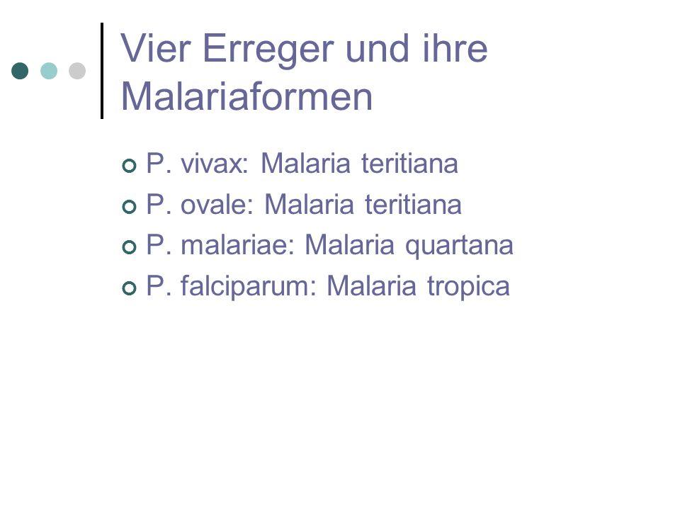 Vier Erreger und ihre Malariaformen P. vivax: Malaria teritiana P. ovale: Malaria teritiana P. malariae: Malaria quartana P. falciparum: Malaria tropi