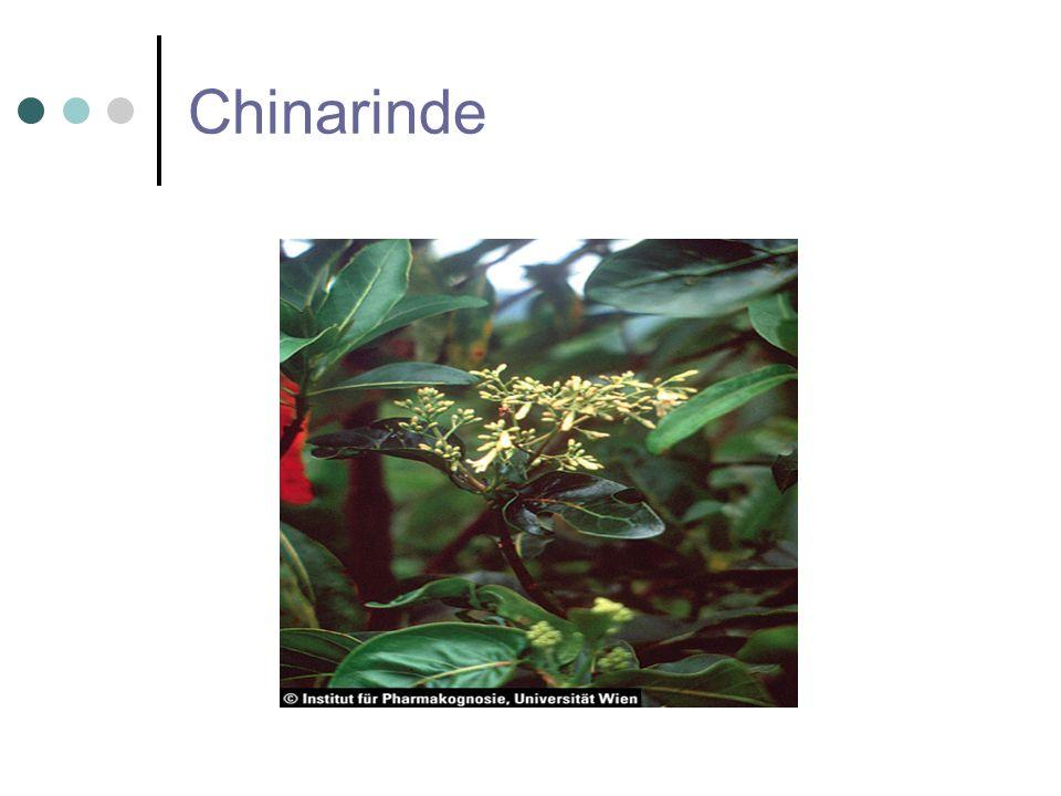 Chinarinde