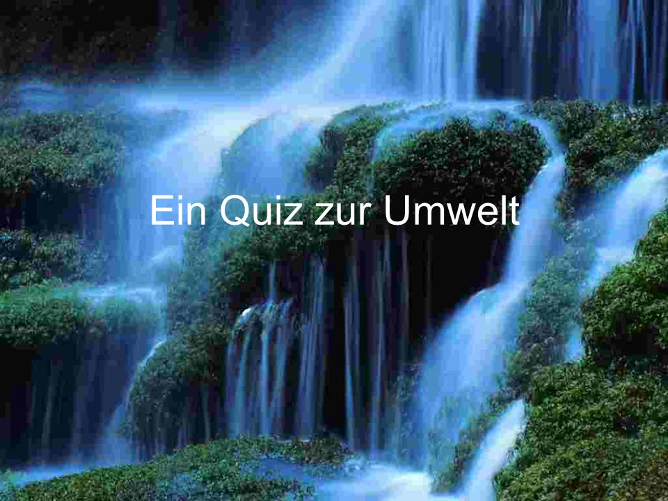 Ein Quiz zur Umwelt