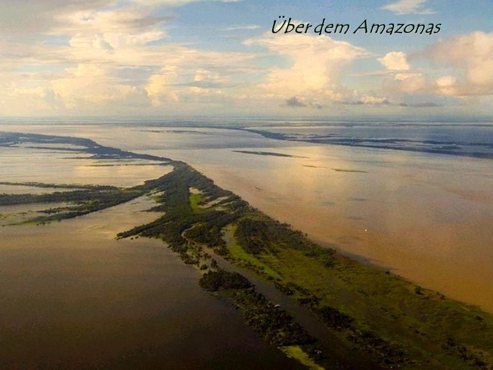 Über dem Amazonas