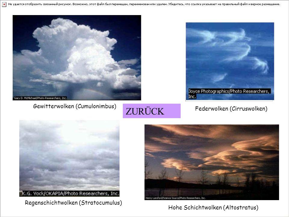 Gewitterwolken (Cumulonimbus) Federwolken (Cirruswolken) Regenschichtwolken (Stratocumulus) Hohe Schichtwolken (Altostratus) ZURÜCK