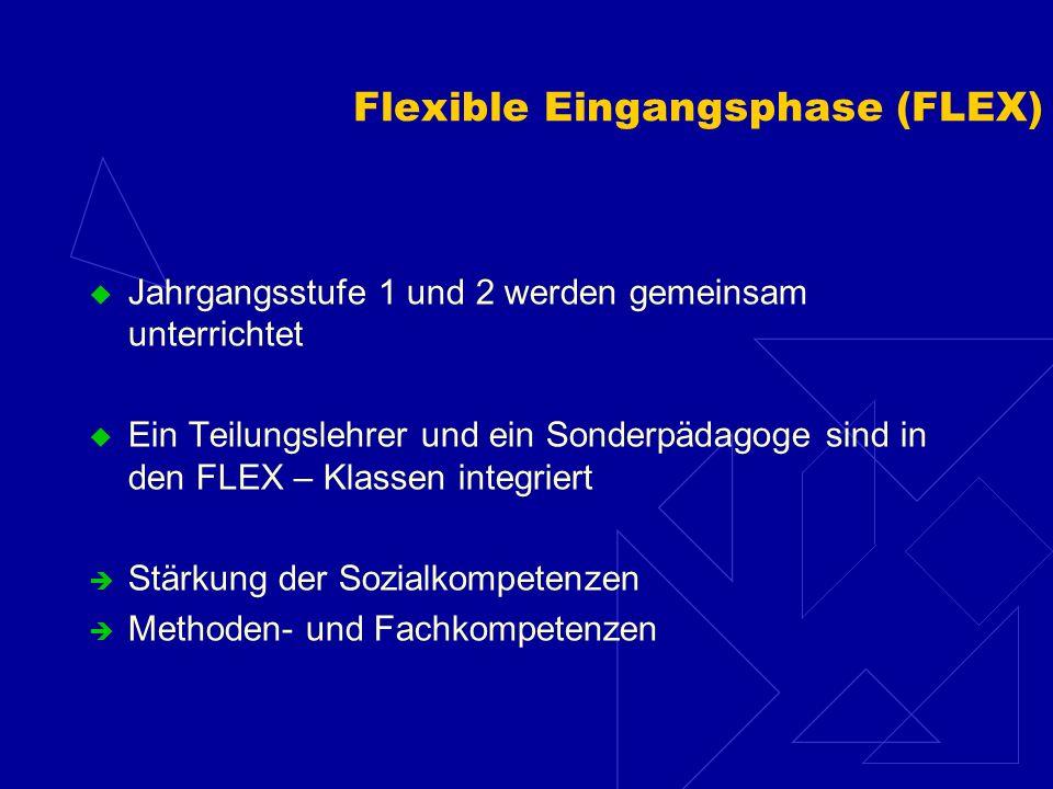 Flexible Eingangsphase (FLEX) Jahrgangsstufe 1 und 2 werden gemeinsam unterrichtet Ein Teilungslehrer und ein Sonderpädagoge sind in den FLEX – Klassen integriert Stärkung der Sozialkompetenzen Methoden- und Fachkompetenzen