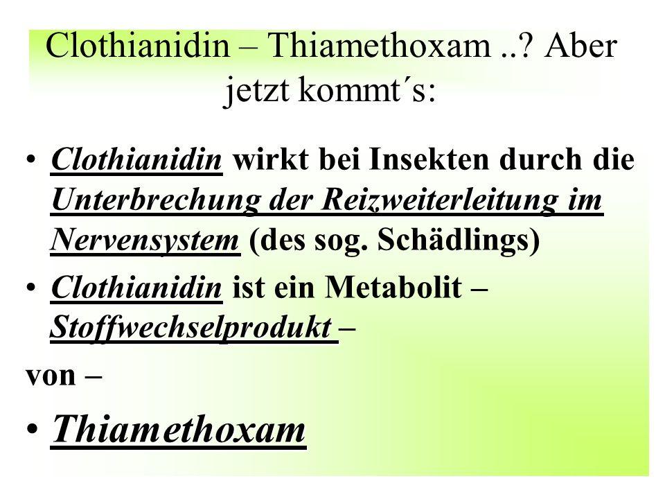 Clothianidin – Thiamethoxam..? Aber jetzt kommt´s: Clothianidin Unterbrechung der Reizweiterleitung im NervensystemClothianidin wirkt bei Insekten dur