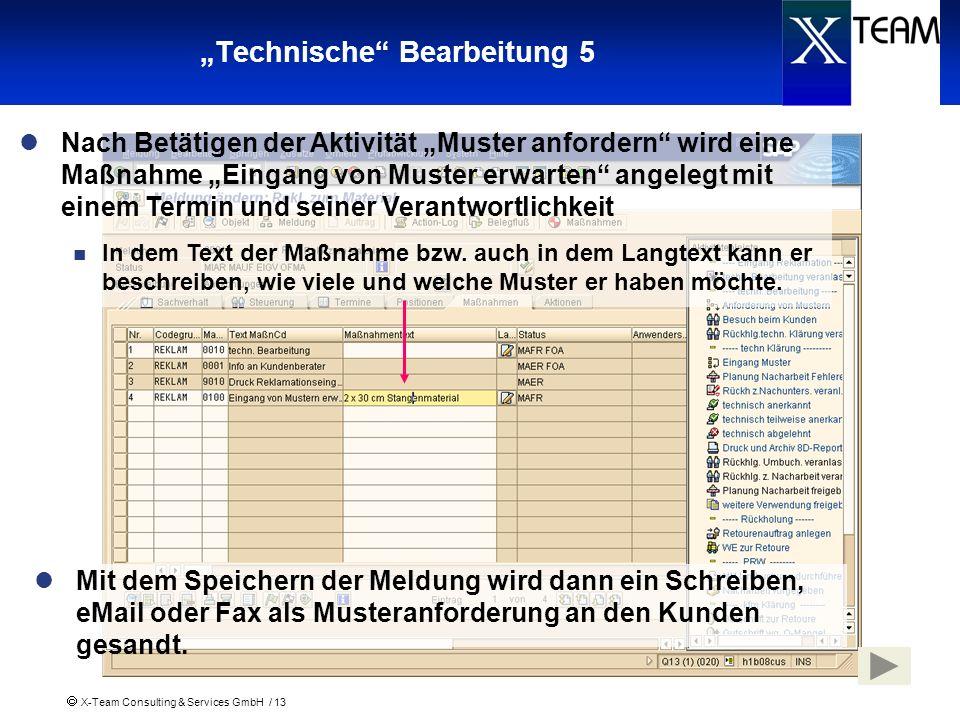 X-Team Consulting & Services GmbH / 13 Technische Bearbeitung 5 Nach Betätigen der Aktivität Muster anfordern wird eine Maßnahme Eingang von Muster er