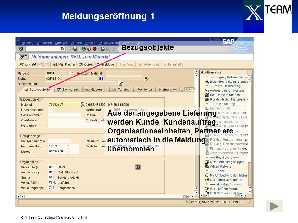 X-Team Consulting & Services GmbH / 4 Meldungseröffnung 1 Aus der angegebene Lieferung werden Kunde, Kundenauftrag, Organisationseinheiten, Partner et