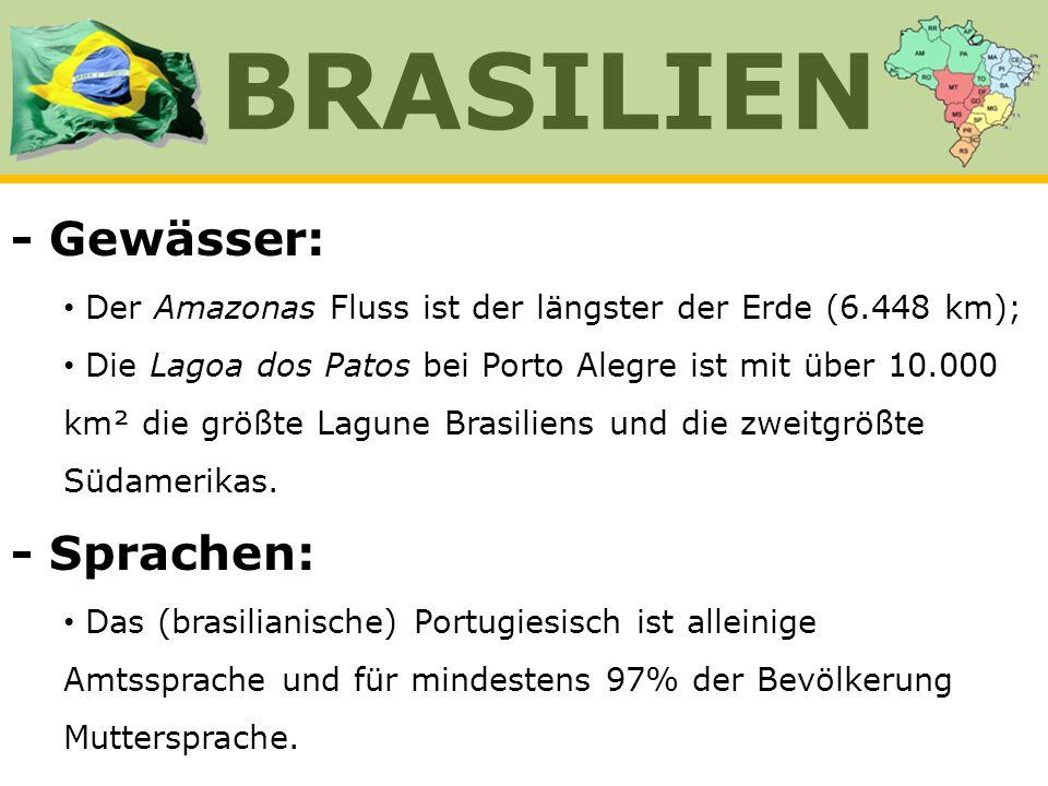 - Gewässer: Der Amazonas Fluss ist der längster der Erde (6.448 km); Die Lagoa dos Patos bei Porto Alegre ist mit über 10.000 km² die größte Lagune Br