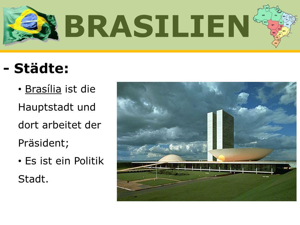 - Städte: Brasília ist die Hauptstadt und dort arbeitet der Präsident; Es ist ein Politik Stadt. BRASILIEN