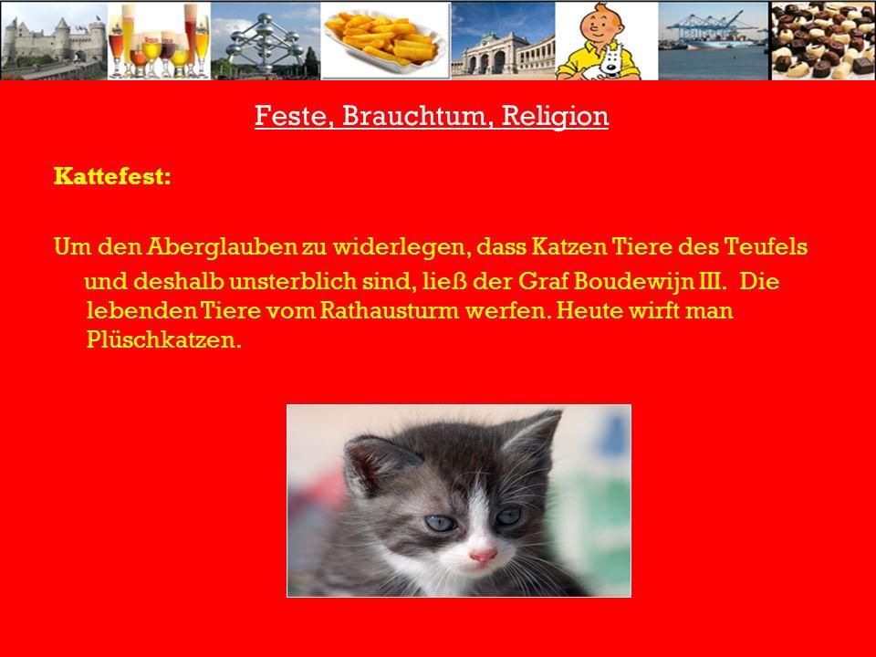 Feste, Brauchtum, Religion Kattefest: Um den Aberglauben zu widerlegen, dass Katzen Tiere des Teufels und deshalb unsterblich sind, ließ der Graf Boudewijn III.