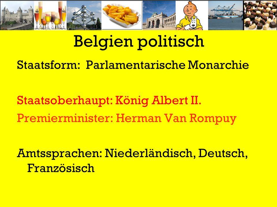 Belgien politisch Staatsform: Parlamentarische Monarchie Staatsoberhaupt: König Albert II. Premierminister: Herman Van Rompuy Amtssprachen: Niederländ