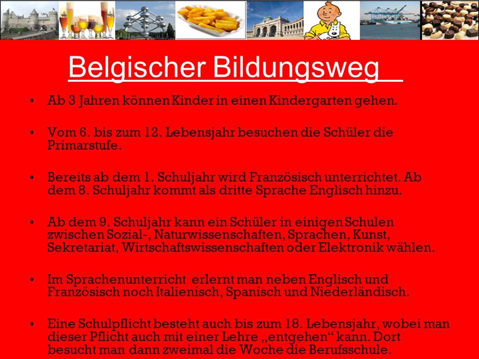 Belgischer Bildungsweg Ab 3 Jahren können Kinder in einen Kindergarten gehen. Vom 6. bis zum 12. Lebensjahr besuchen die Schüler die Primarstufe. Bere
