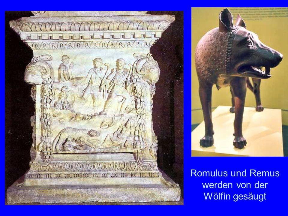Gründung Romulus und Remus werden von der Wölfin gesäugt