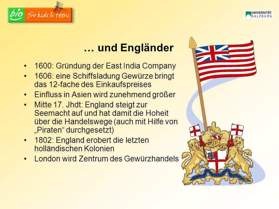 … und Engländer 1600: Gründung der East India Company 1606: eine Schiffsladung Gewürze bringt das 12-fache des Einkaufspreises Einfluss in Asien wird zunehmend größer Mitte 17.