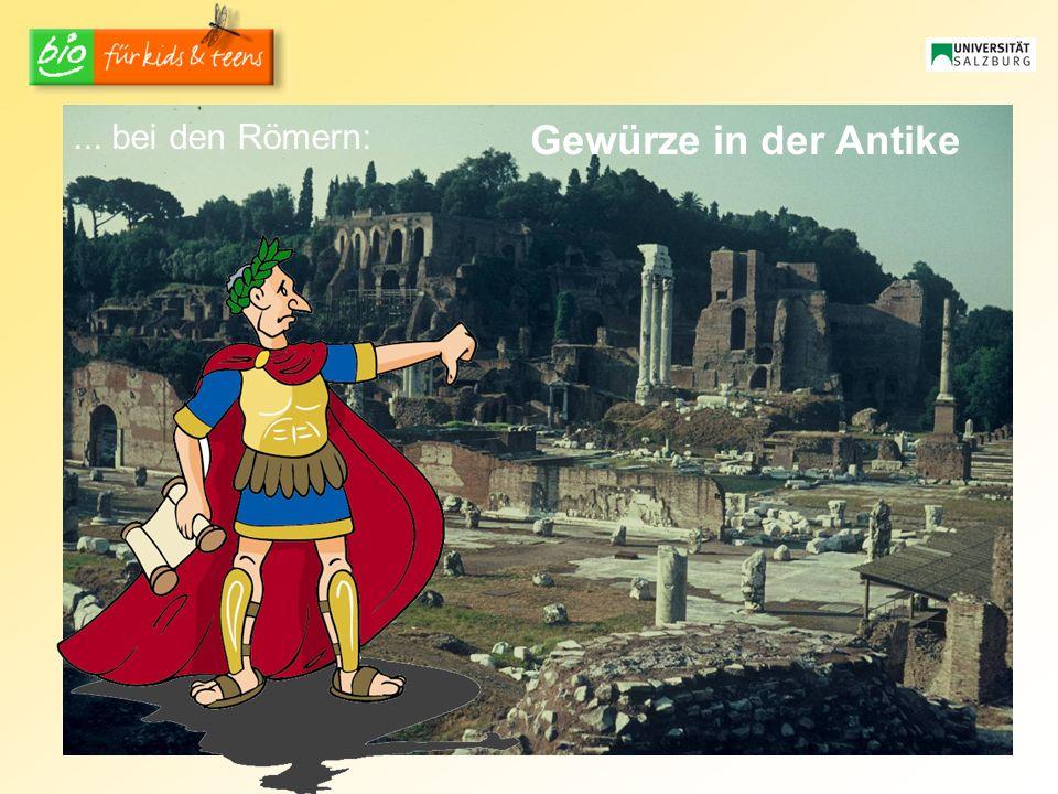 Gewürze in der Antike... bei den Römern: