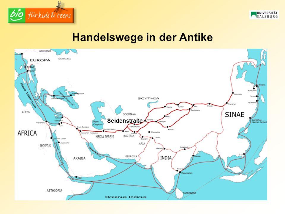 Handelswege in der Antike Seidenstraße