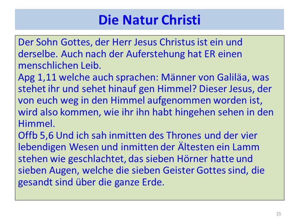 Die Natur Christi Der Sohn Gottes, der Herr Jesus Christus ist ein und derselbe.