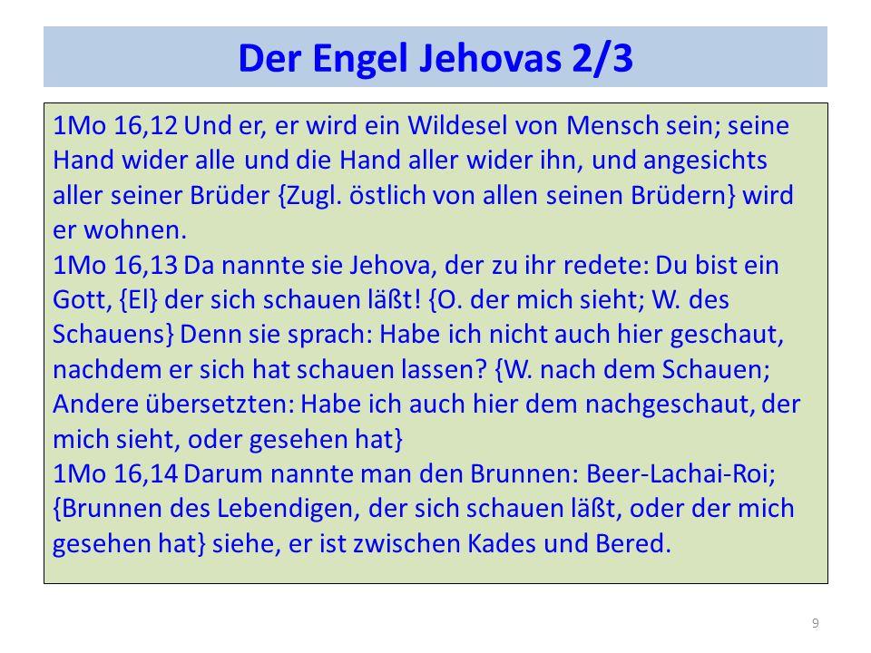 Der Engel Jehovas 2/3 1Mo 16,12Und er, er wird ein Wildesel von Mensch sein; seine Hand wider alle und die Hand aller wider ihn, und angesichts aller seiner Brüder {Zugl.