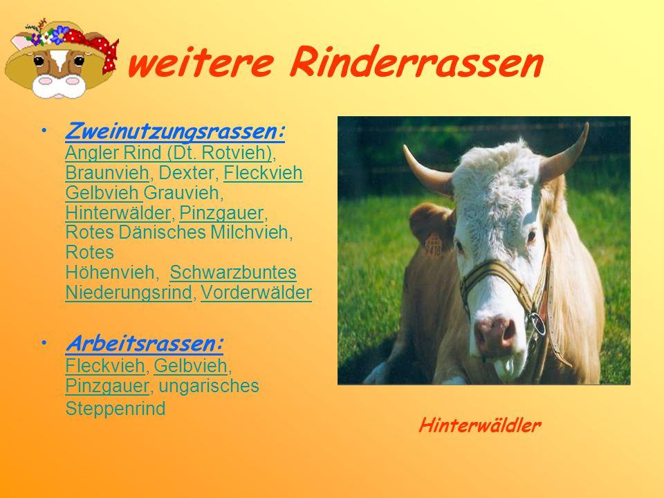 weitere Rinderrassen Zweinutzungsrassen: Angler Rind (Dt. Rotvieh), Braunvieh, Dexter, Fleckvieh Gelbvieh Grauvieh, Hinterwälder, Pinzgauer, Rotes Dän