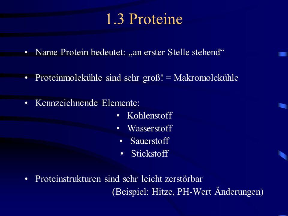 1.3 Proteine Name Protein bedeutet: an erster Stelle stehend Proteinmolekühle sind sehr groß! = Makromolekühle Kennzeichnende Elemente: Kohlenstoff Wa