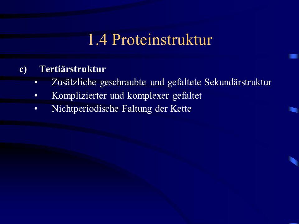 1.4 Proteinstruktur c)Tertiärstruktur Zusätzliche geschraubte und gefaltete Sekundärstruktur Komplizierter und komplexer gefaltet Nichtperiodische Fal