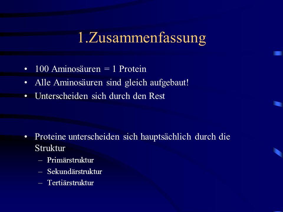 1.Zusammenfassung 100 Aminosäuren = 1 Protein Alle Aminosäuren sind gleich aufgebaut! Unterscheiden sich durch den Rest Proteine unterscheiden sich ha