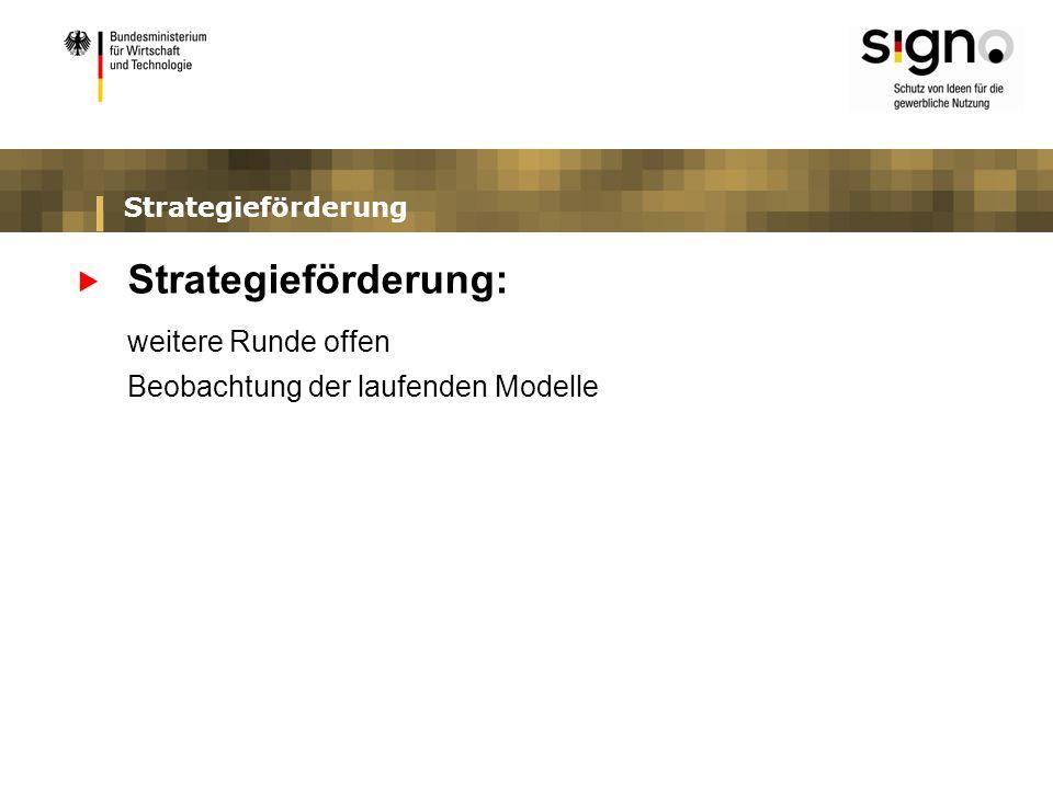 Strategieförderung Strategieförderung: weitere Runde offen Beobachtung der laufenden Modelle