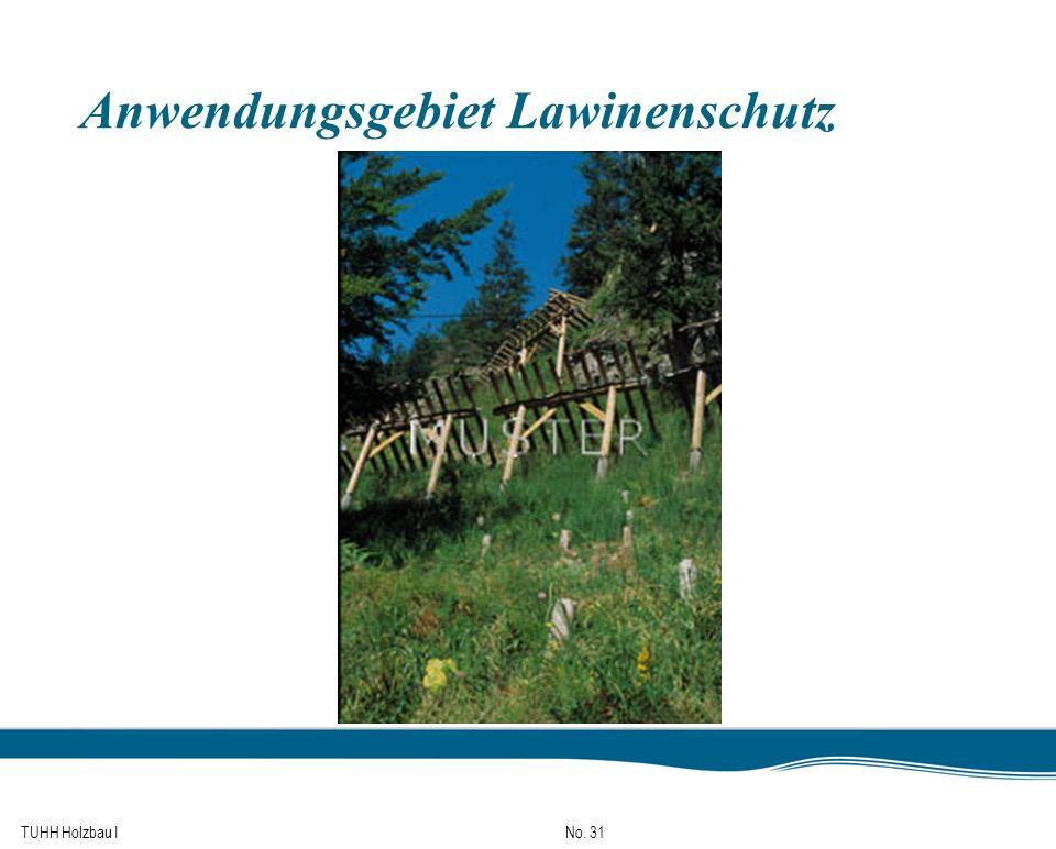 TUHH Holzbau I No. 31 Anwendungsgebiet Lawinenschutz