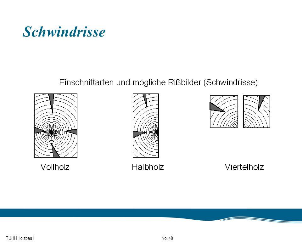 TUHH Holzbau I No. 48 Schwindrisse
