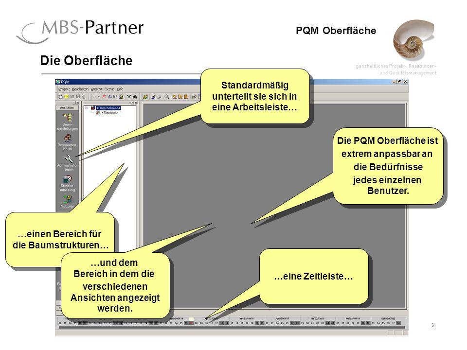 ganzheitliches Projekt-, Ressourcen- und Qualitätsmanagement 13 PQM Oberfläche Ansichten Dialoge lassen sich durch einen Doppelklick oder über einen Rechtsklick und Auswahl von Einstellungen öffnen.
