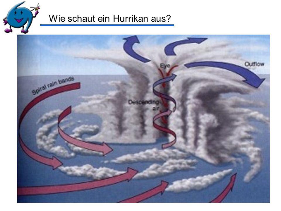 Windgeschwindigkeit: > 61 km/h tropischer Sturm bekommt seinen eigenen Namen > 117 km/h wird Hurrikan/Taifun/…….
