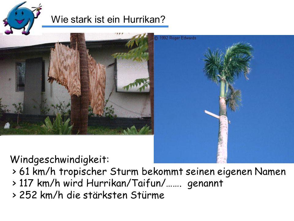 Hurrikan Harrys Quiz – Frage 5 Wie schnell wandert ein Hurrikan.