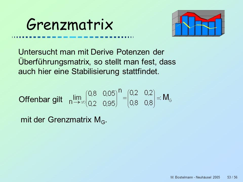 M. Bostelmann - Neuhäusel 200553 / 56 Grenzmatrix Untersucht man mit Derive Potenzen der Überführungsmatrix, so stellt man fest, dass auch hier eine S