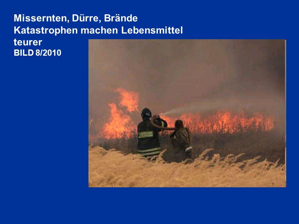 Missernten, Dürre, Brände Katastrophen machen Lebensmittel teurer BILD 8/2010
