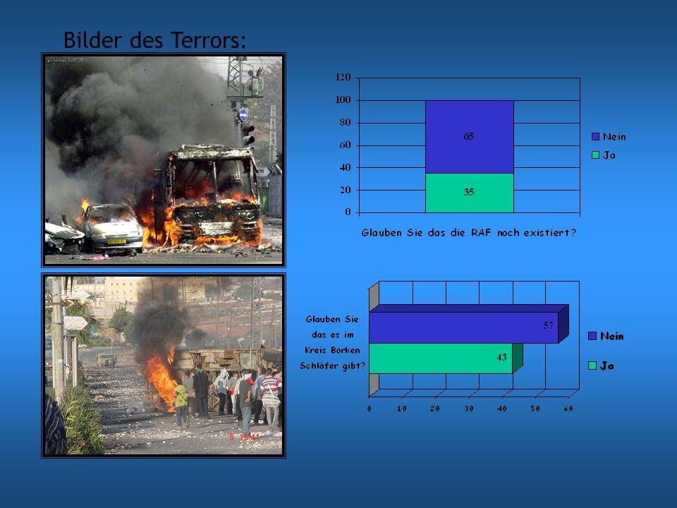 Welche Arten des Terrorismus gibt es.