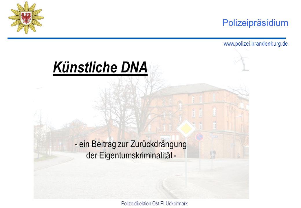 www.polizei.brandenburg.de Polizeidirektion Ost PI Uckermark Polizeipräsidium Künstliche DNA - ein Beitrag zur Zurückdrängung der Eigentumskriminalität -