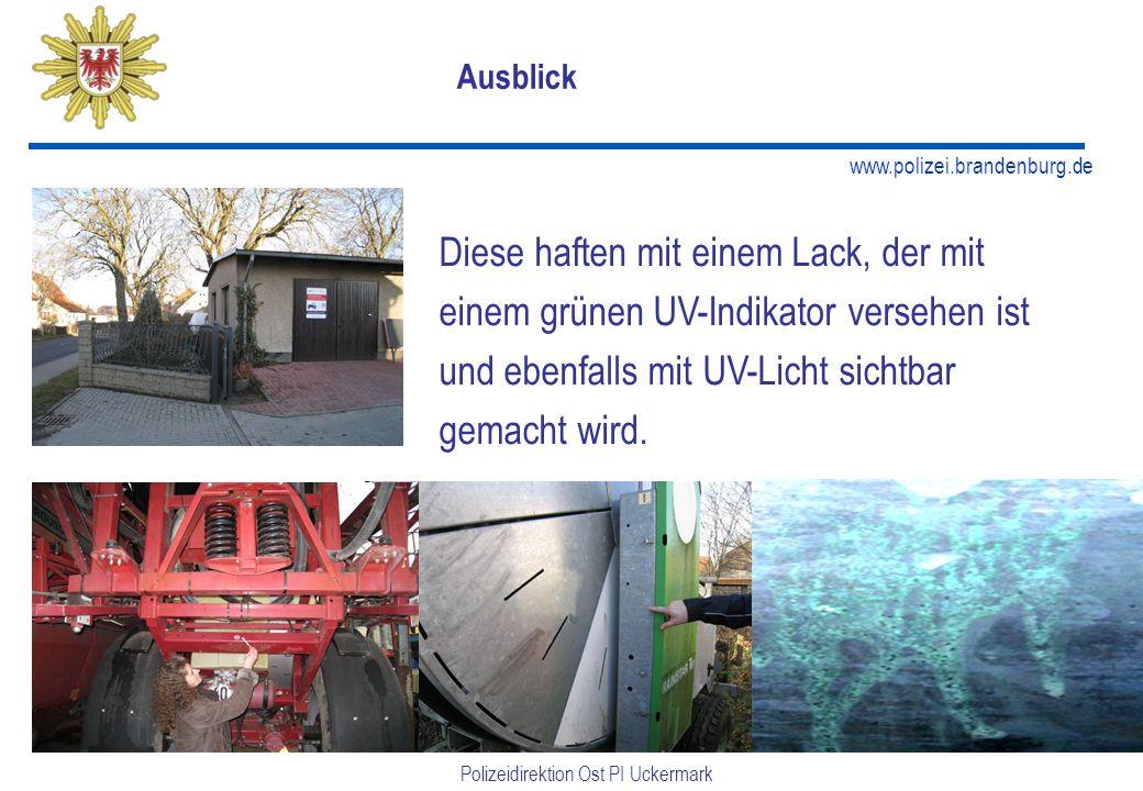 www.polizei.brandenburg.de Polizeidirektion Ost PI Uckermark Ausblick Diese haften mit einem Lack, der mit einem grünen UV-Indikator versehen ist und ebenfalls mit UV-Licht sichtbar gemacht wird.