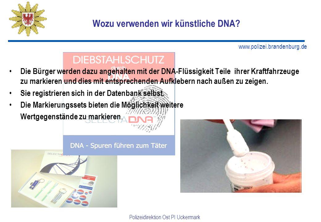 www.polizei.brandenburg.de Polizeidirektion Ost PI Uckermark Wozu verwenden wir künstliche DNA.