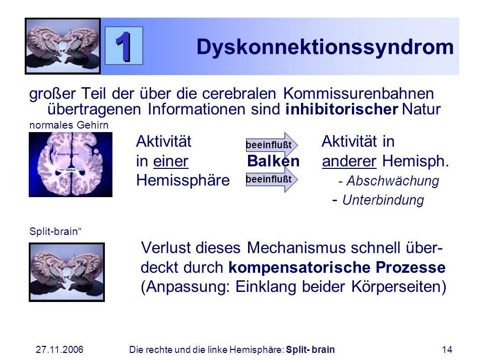 27.11.2006 Die rechte und die linke Hemisphäre: Split- brain14 Dyskonnektionssyndrom großer Teil der über die cerebralen Kommissurenbahnen übertragene