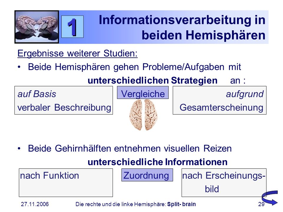 27.11.2006 Die rechte und die linke Hemisphäre: Split- brain29 Informationsverarbeitung in beiden Hemisphären Ergebnisse weiterer Studien: Beide Hemis