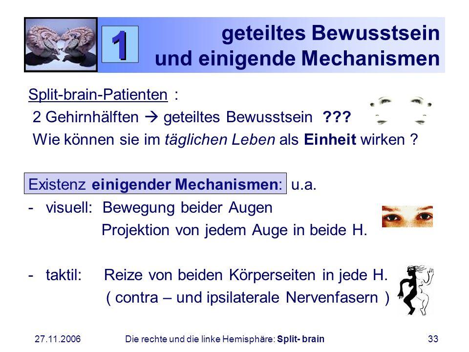 27.11.2006 Die rechte und die linke Hemisphäre: Split- brain33 geteiltes Bewusstsein und einigende Mechanismen Split-brain-Patienten : 2 Gehirnhälften