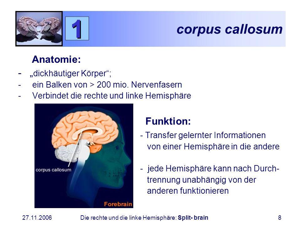 27.11.2006 Die rechte und die linke Hemisphäre: Split- brain8 corpus callosum Anatomie: - dickhäutiger Körper; - ein Balken von > 200 mio. Nervenfaser