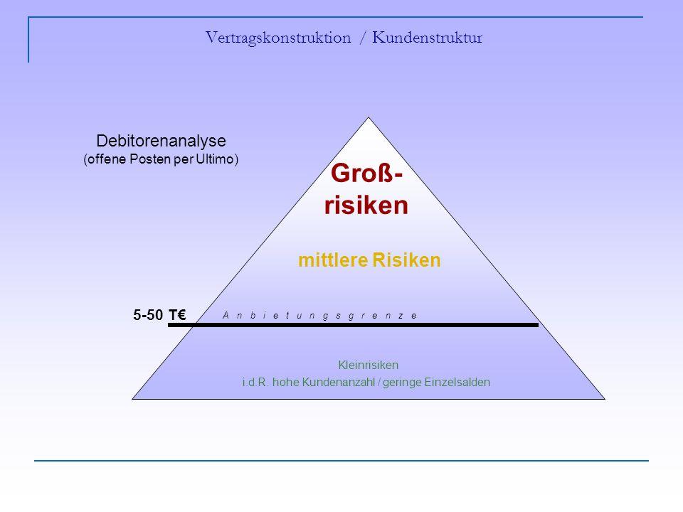 Vertragskonstruktion / Kundenstruktur Kleinrisiken i.d.R.