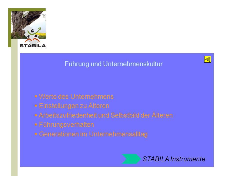 STABILA Instrumente zum Feld: Führung und Unternehmenskultur Altersstrukturanalyse Mitarbeiterbefragung Strategieworkshop Sensibilisierung und Training der Führungskräfte Erfahrungsaustausch im Unternehmenskreis