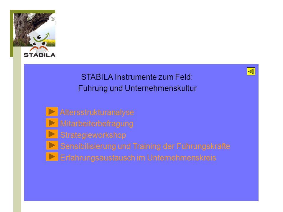 Karrieremanagement Beschäftigungsfähigkeit Karriereverläufe und berufliche Perspektiven Lebenszyklusorientierung und Work-Life-Balance Entgelt- und Aufstiegspolitik Langzeitkonten und betriebliche Altersvorsorge STABILA Instrumente