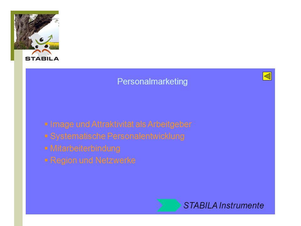 STABILA Angebote zum Feld: Personalmarketing Mitarbeiterbefragung Mitarbeitergespräche und Zielvereinbarung Entgeltgestaltung und Erfolgsbeteiligung